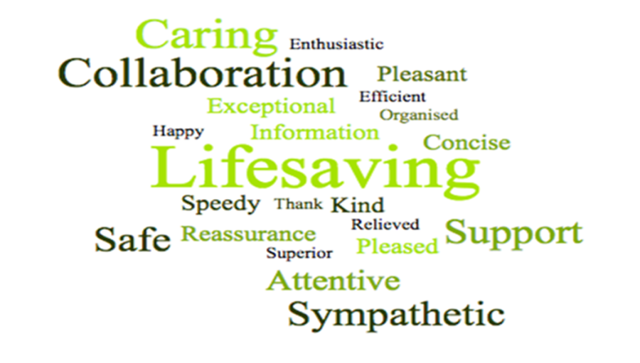 GMCancer Surgical Hub wordcloud: includes the following words: caring, enthusiastic, collaboration, pleasant, efficient, organised, exceptional, lifesaving, speedy, kind, reassurance, safe, attentive, sympathetic, support.